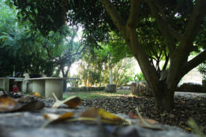 foto_gallery28-1570108344